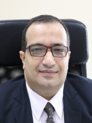 Prof. Emad Hassan Aly